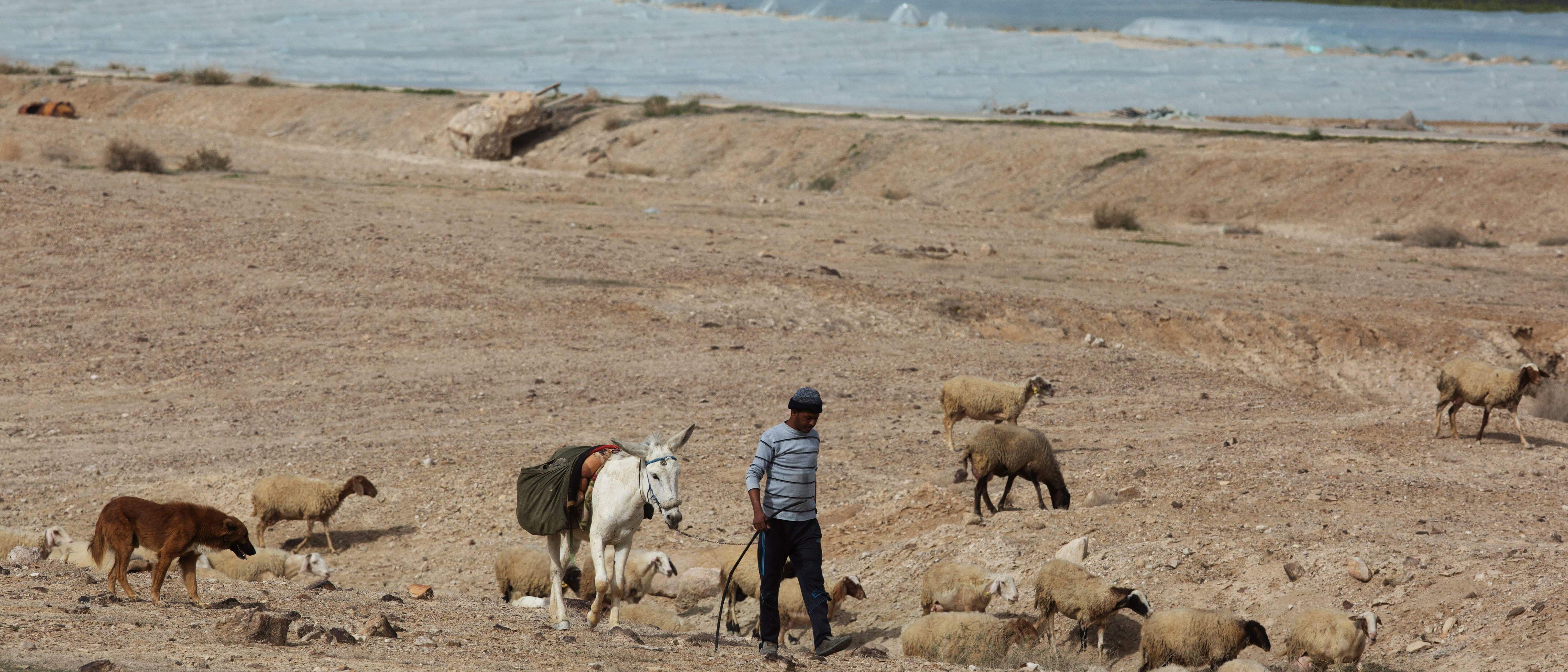 West Bank Land Grab
