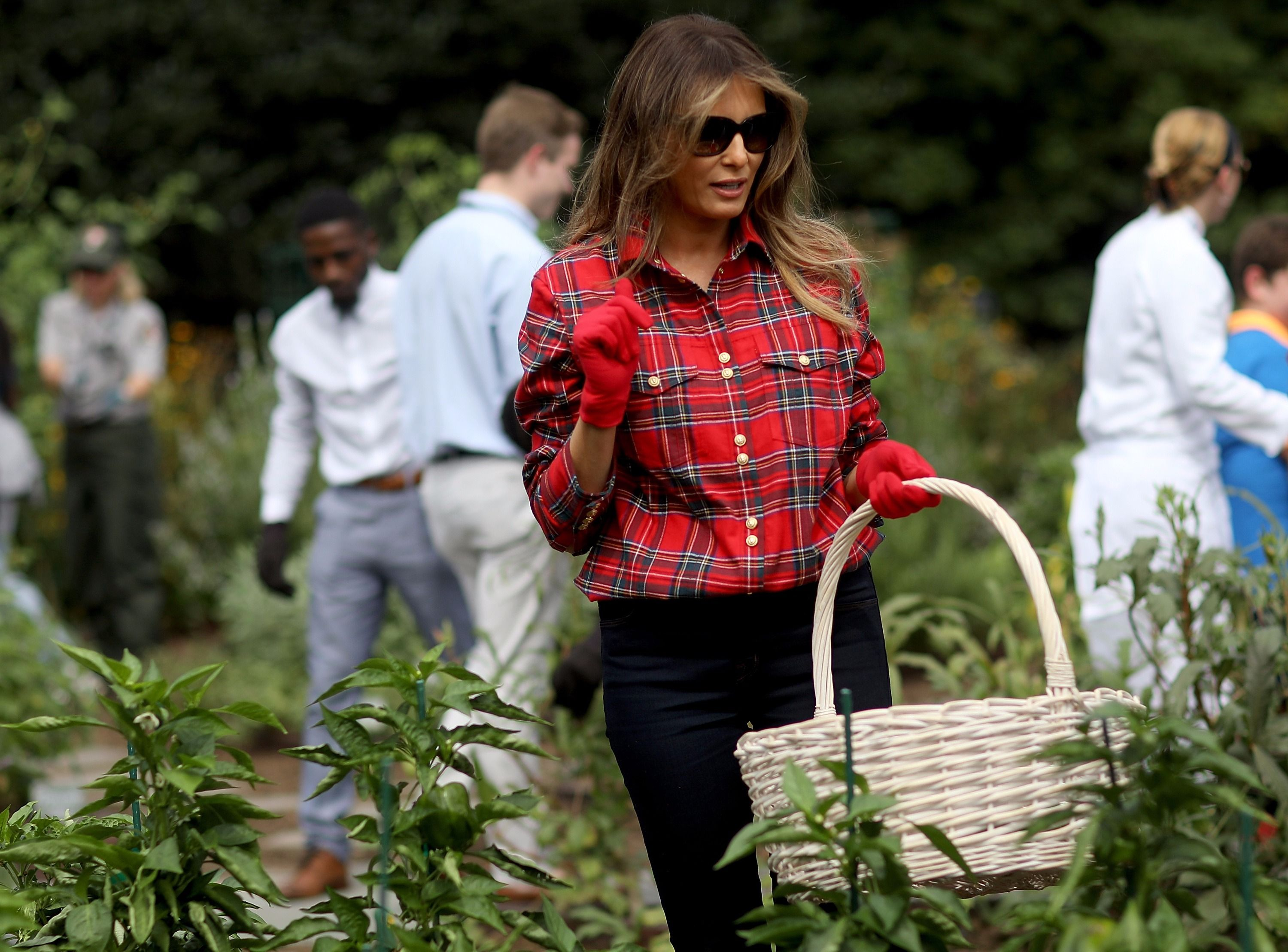 School librarian rejects book donation from Melania Trump