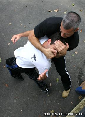 THE MASTER AT WORK: Krav Maga expert David Kahn (right) demonstrates how to subdue an adversary.