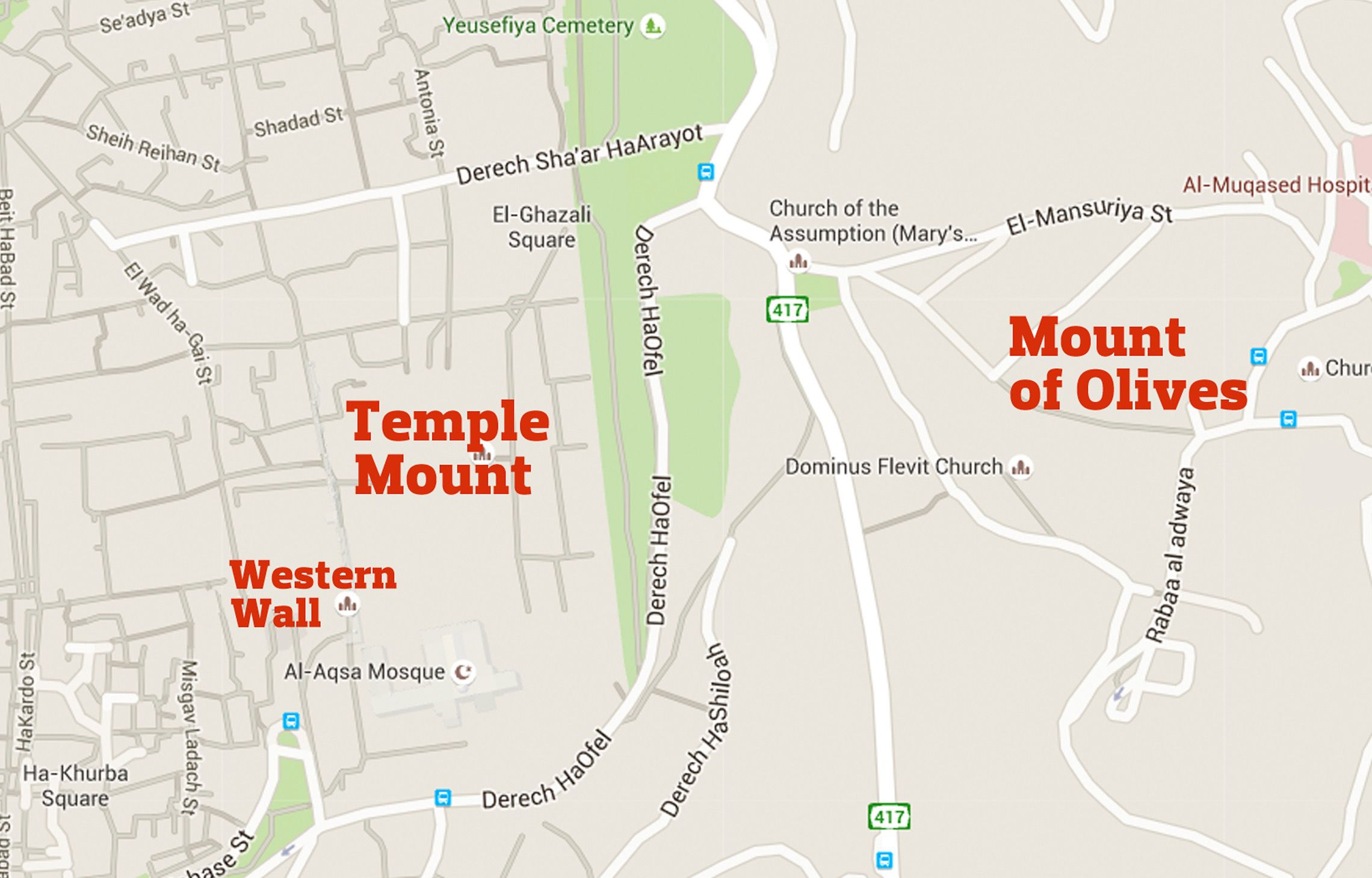 temple mount revival movement revels in crowdfunded passover sacrifice —but at what cost – the forward. temple mount revival movement revels in crowdfunded passover