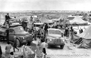 FRUSTRATION: New arrivals in the 1950s were initially housed in tent camps, because permanent housing was not available.