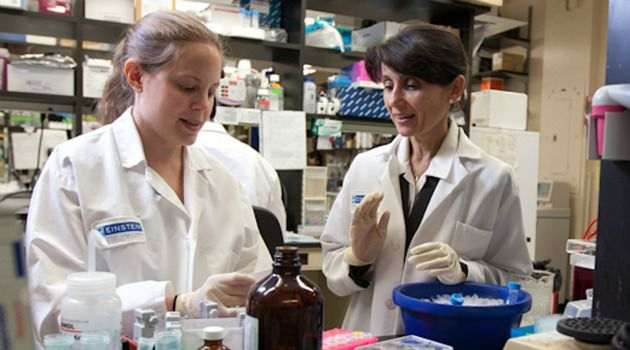 Seeking A Cause: Professor Ana Maria Cuervo (right) with investigator Samantha J. Orenstein work at a cellular level to understand Parkinson?s.
