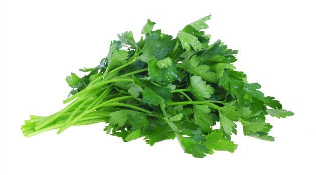 How Green Was My Seder Plate: Our word ?celery? derives from Greek selinon, while ?parsley? comes from petroselinon.