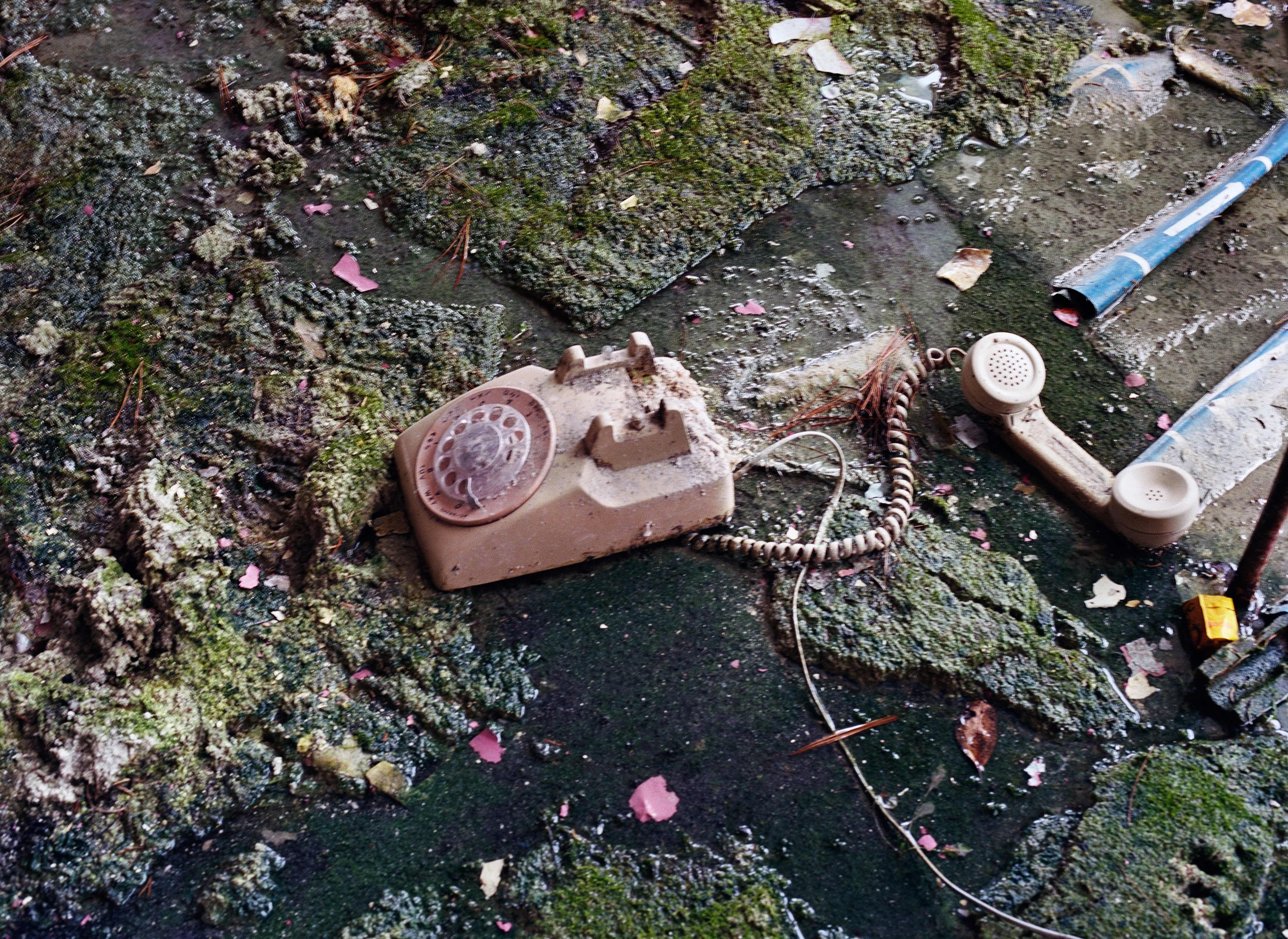 Rotary Phone, Pines Hotel, South Fallsburg, NY
