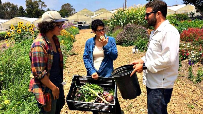 Gefilteria's Liz Alpern (center) at Coastal Roots Farm in San Diego, California.