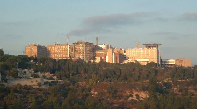 Foundering Flagship: In recent years, the Hadassah Medical Center in Jerusalem has been losing tens of millions of dollars annually