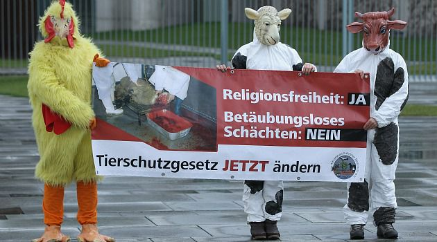 Kosher Fight: Animal rights activists, like these German demonstrators, say kosher and halal slaughter are unnecessarily cruel to animals.