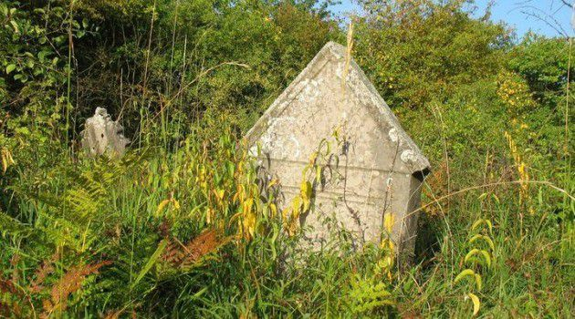Overgrown: A neglected Jewish cemetery in the Polish town of Checiny.