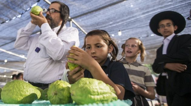 This Sukkot, Ditch Your Etrog and Lulav in Favor of Apples and Maple Leaves