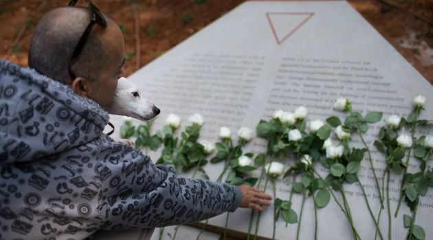 Pink Remembrance: An Israeli man places flowers on a new monument to gays and lesbians killed by Nazis.
