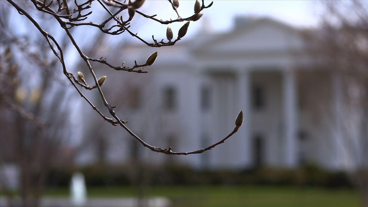 White House Aint no April Fools joke, DC Crew launches April 1st