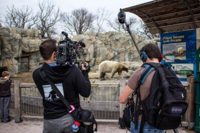 "Hidden Heroes zoo 2 400x267 Chicago Video Crew and Hidden Heroes ""Ain't Lion"" About Saving the Environment"