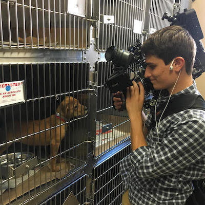 Bissell Empty the Shelters 1 400x399 New York Video Crew Helps Bissell Empty the Animal Shelters