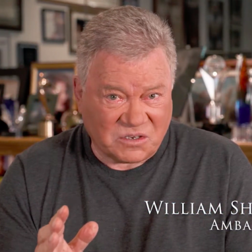 Screen Shot 2020 01 24 at 1.45.14 PM 500x500 Go To Team Los Angeles Crew | March of Dimes   William Shatner