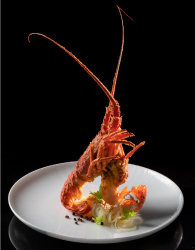 HAKKASAN JAKARTA WILL COMBINE WORLD-CLASS CANTONESE CUISINE & A PRIME LOCATION IN THE BEATING HEART OF VIBRANT JAKARTA