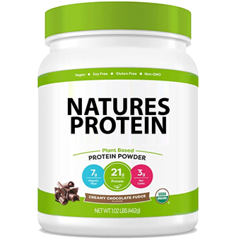 Plant Based Protein Powder, Awesome Chocolate Fudge