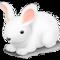 Java CloudAMQP Sample App