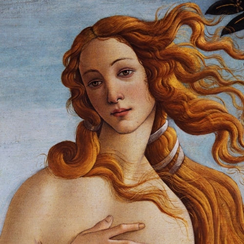 Cmitalian Renaissance500