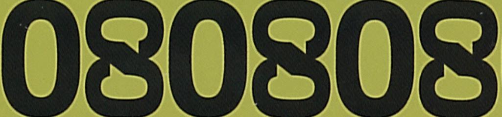 2008 Banner