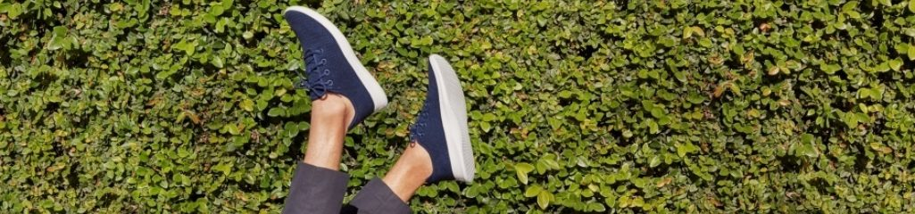Hd19 Allbirds Bnr