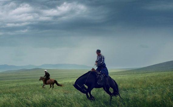 All The Wild Horses 1