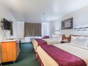Rodeway Inn & Suites Albuquerque Midtown