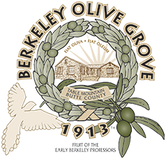 Berkeley Olive Grove Organic 100% Extra Virgin Olive Oil