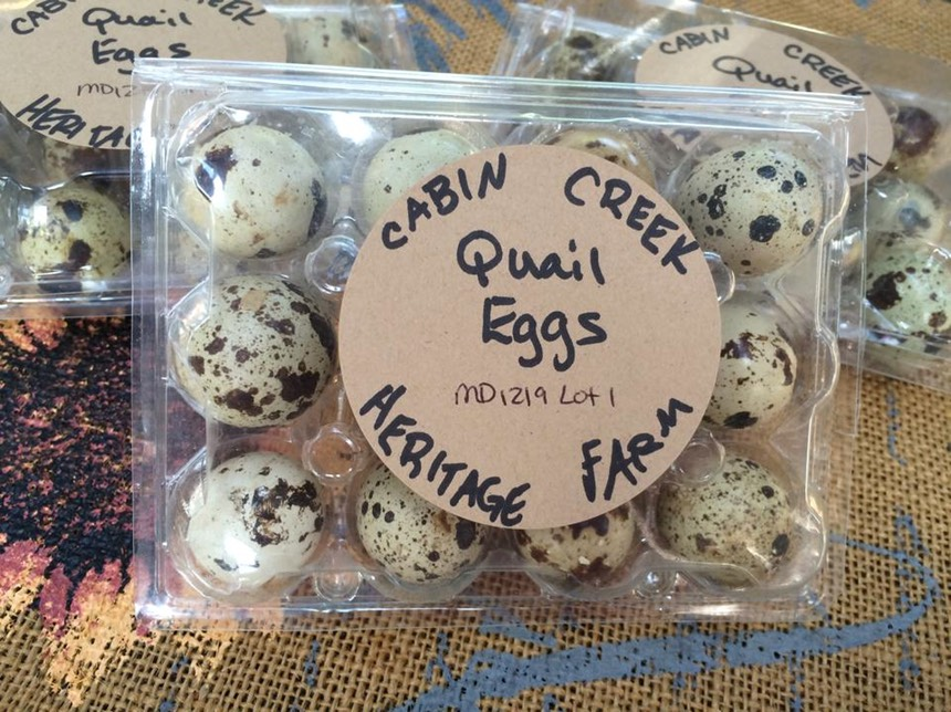 Cabin Creek Pastured Eggs