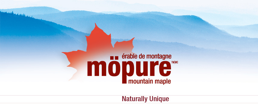 Mopure Maple Candy