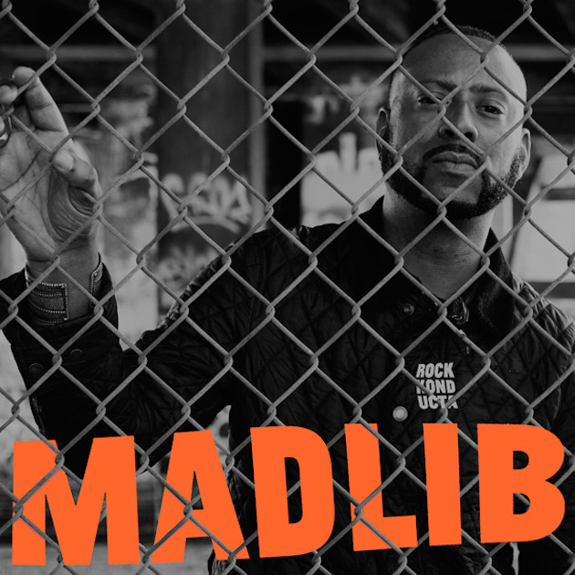 Mad Lib Rock Konducta chain link fence