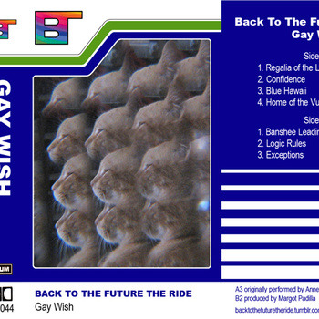 """Back to the Future the Ride """"Gay Wish"""""""