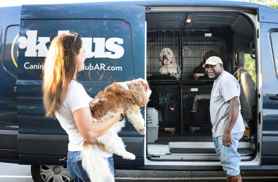 Bark Bus Driver Finds His Passion Amongst the Pooches