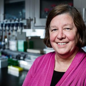 UAMS' BioVentures Goes Nonprofit