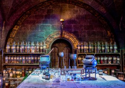 Get Magical at Harry Potter Holiday Wonderland