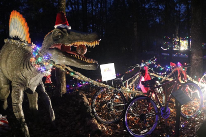 Brand New Holiday Dino-Lites Now Open