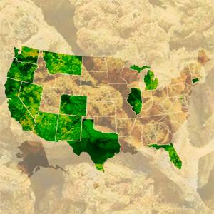Marijuana Prices Range Widely in U.S.