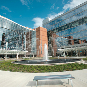 UAMS Expects Big Savings From $150M Energy Project