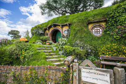 Venture There & Back Again at Adult Night 'Hobbit' Performance