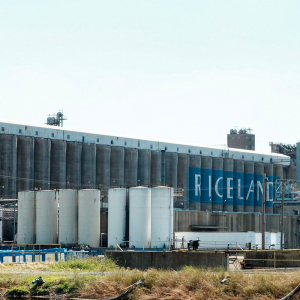Trade War Puts Riceland Into 'Holding Pattern'