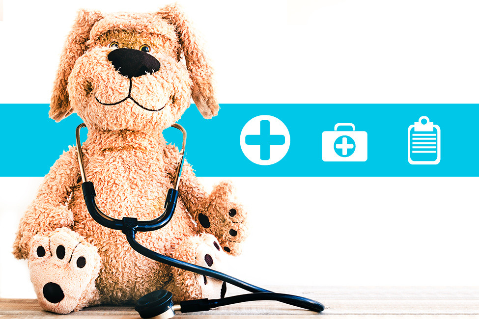 Finding the Right Pediatrician illustration stuffed dog doctor 127179