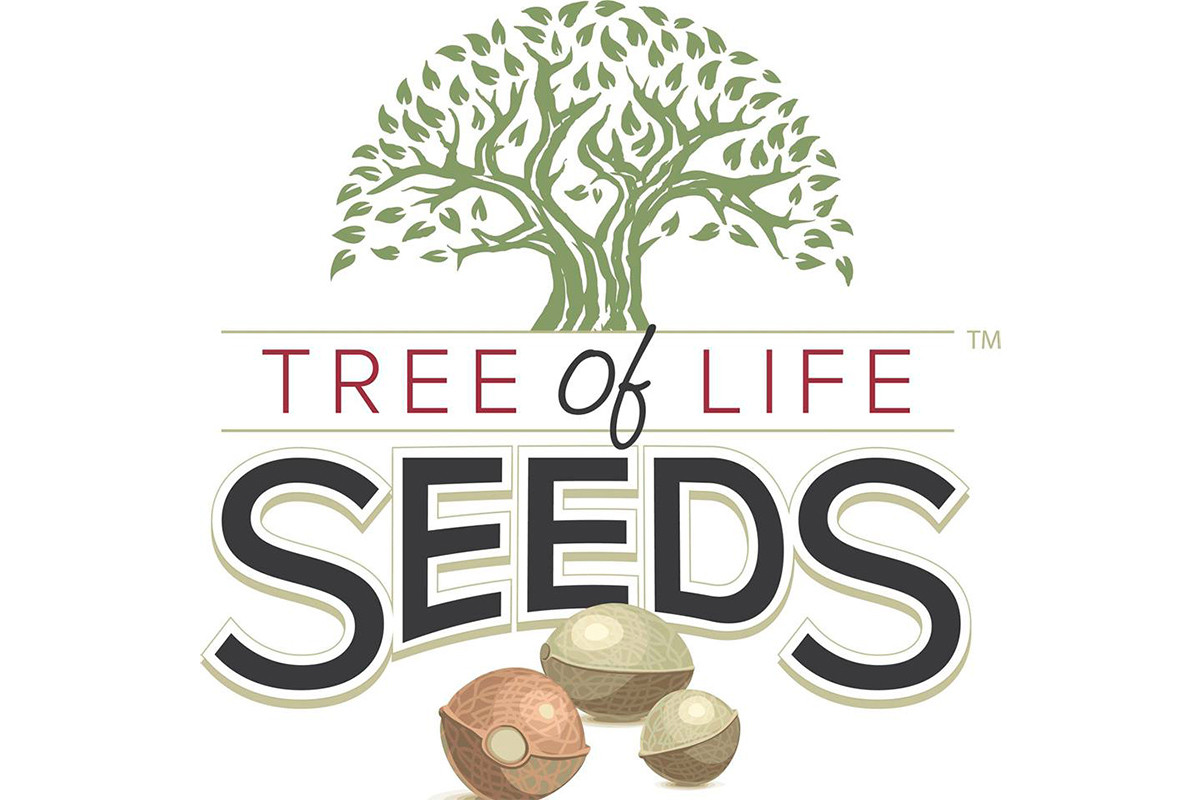 Tree of Life Wins Case After Defendant Disappears