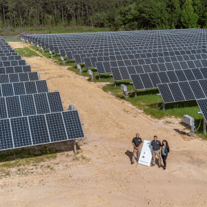 Camden, Danville, Jonesboro Projects Mark Statewide Surge in Solar Power
