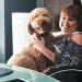 Dog-Friendly Workplaces Raise Smiles, Relieve Stress