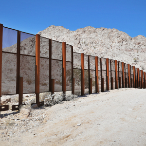 The Immigration Conundrum (Editorial)