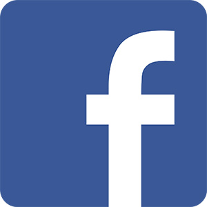 Facebook Dominates With 2.45 Billion Users