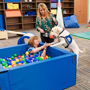 Therapy Dog Nibs On the Job in Fort Smith