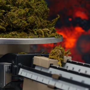 Arkansas Medical Marijuana Sales Top $50M; 2 More Dispensaries Set