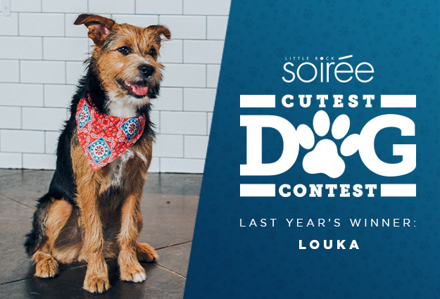 Soiree Cutest Dog Contest 2020