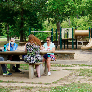 Virus Has City Parks Scrambling to Recover