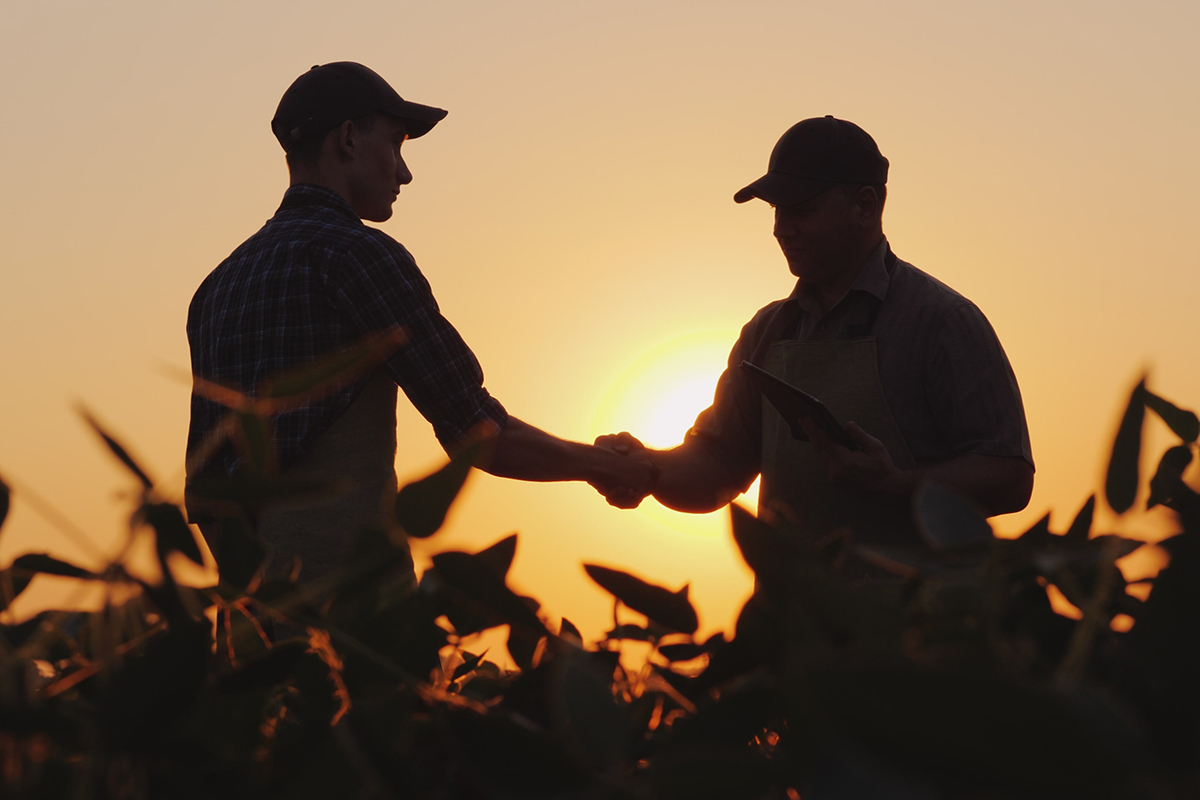 Successful Succession: Planning For Your Farm's Future